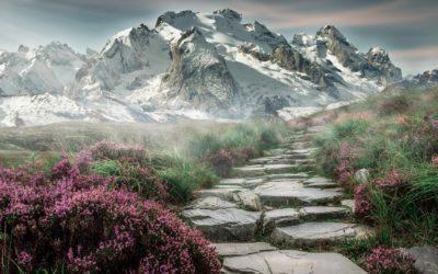 Olaylar ve Dualar – 7 | İmam-ı A'zam ve İmam Şazilî Hazretlerinin Duaları | Mustafa Yılmaz